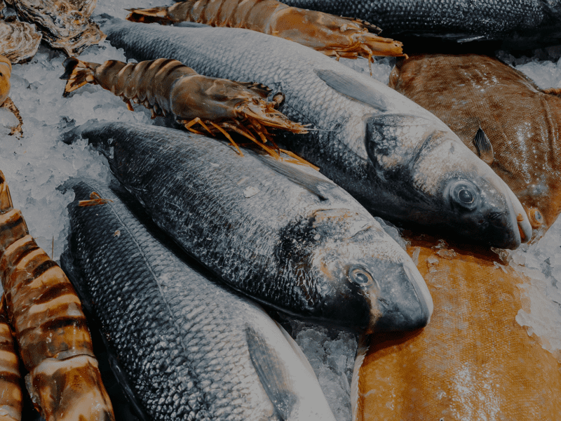 Sustainable seafood at Jenkins & Son Fishmongers in UK, 2021