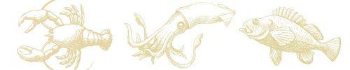 lobster_squid_fish